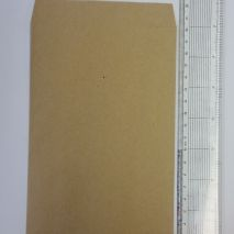 Brown Paper Envelope 120 x 200mm (Item ID:brw120)